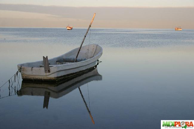 Puerto Campeche : Mexplora