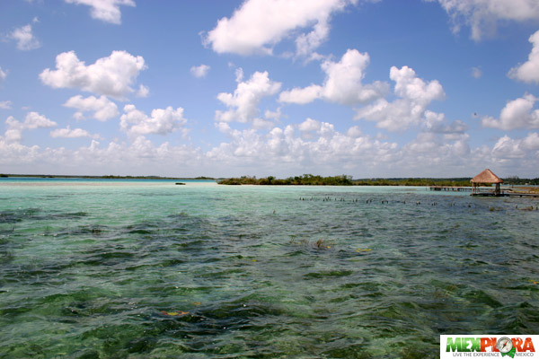 Laguna de Bacalar : Mexplora