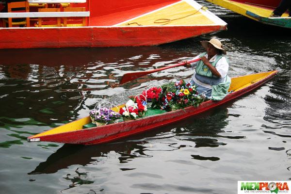 Canales de Xochimilco : Mexplora