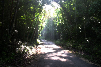 Reserva de la biosefra de Calakmul