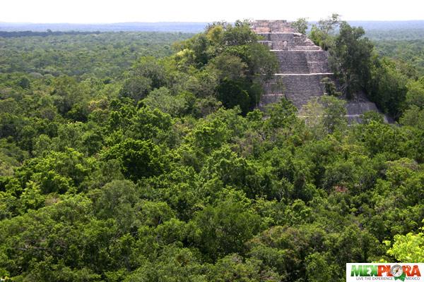 calakmul-mexplora