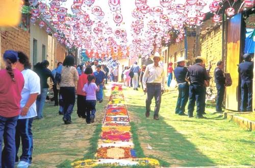 tapetes florales, patamban, michoacan, mexico