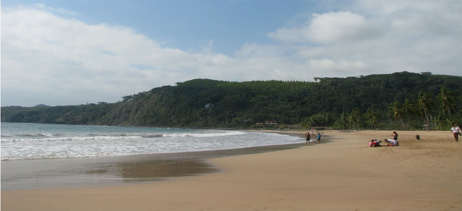 photoEscudo_Playas_certificadas_de_Nayarit_PLAYA_CHACALA_MAIN