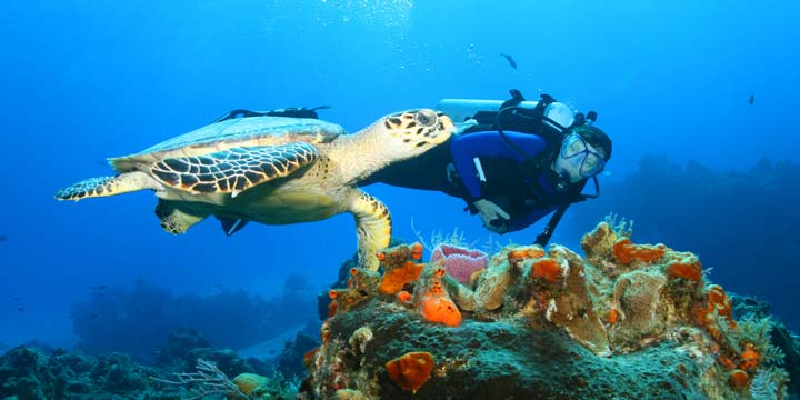 scuba-diving-in-cozumel