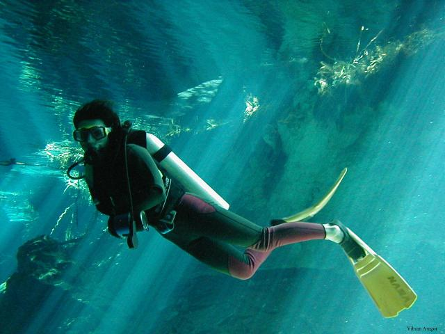 scuba-diving-playa-del-carmen