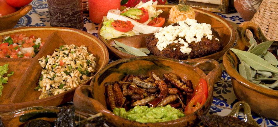 photoEscudo_TLAX_Gastronomia_Ac_gastronomia