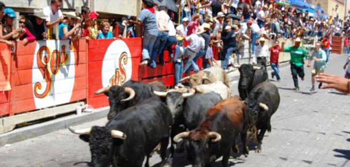 Expo-Feria-Huamantla-2014